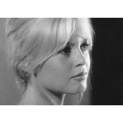 Carte Brigitte Bardot - 10.5x15 cm