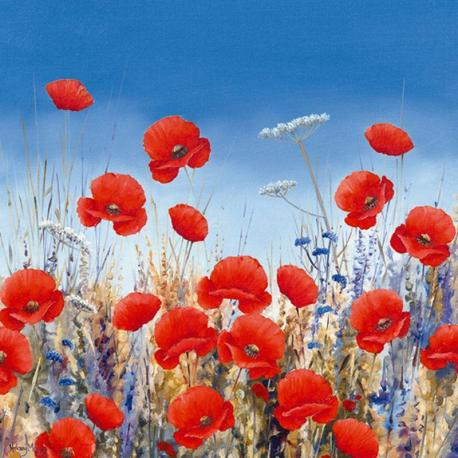 Carte Hilary Mayes - Poppy Meadow II - 14x14 cm