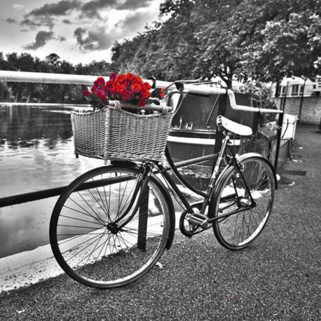 Carte Franck Assaf - Romantic roses I - 14x14 cm