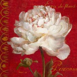 Carte Danhui Nai - Paris Blossom IV - 14x14 cm