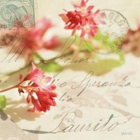 Carte Deborah Schenck - Vintage Letters and Pink Blossoms - 14x14 cm