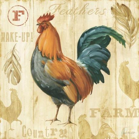 Carte Lisa Audit - Joli Rooster II - 14x14 cm