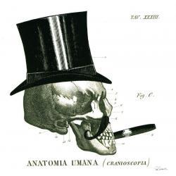 Carte Sue Schlabach - Dandy Bones III - 14x14 cm