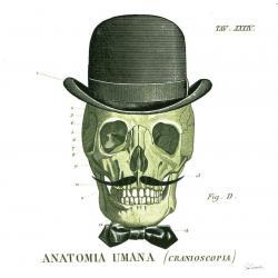 Carte Sue Schlabach - Dandy Bones IV - 14x14 cm