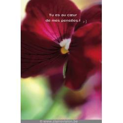 Carte Artistes Divers La collection souris à la vie - Fleur flou - pensées - 12x17 cm