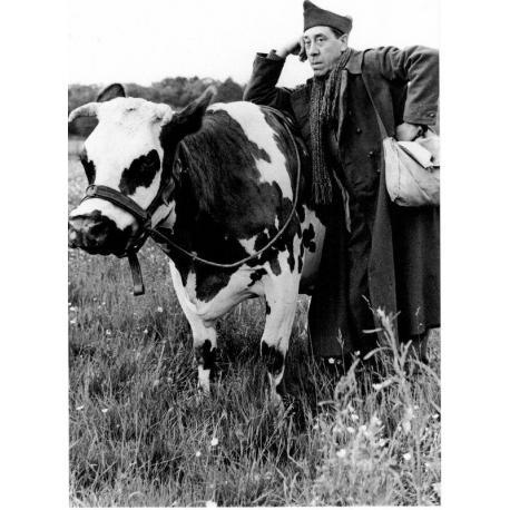 Carte La Vache et le prisonnier - Fernandel - 10.5x15 cm