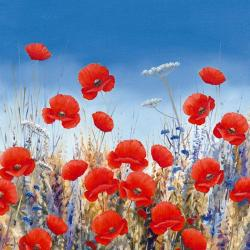 Carte Hilary Mayes - Poppy Meadow II - 14x14 cm