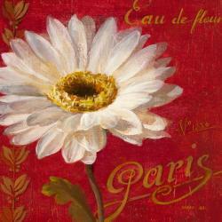 Carte Danhui Nai - Paris Blossom I - 14x14 cm