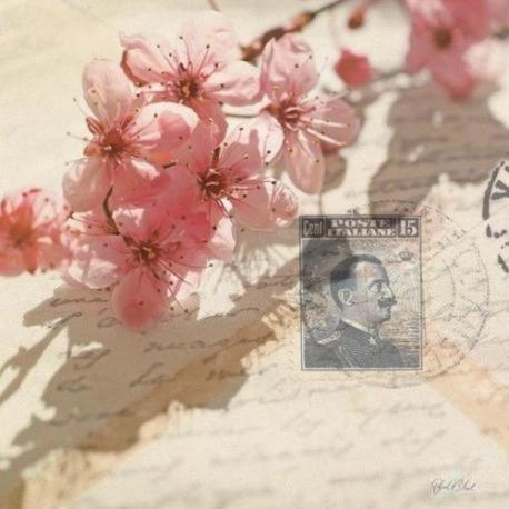 Carte Deborah Schenck - Vintage Letters and Cherry Blossoms - 14x14 cm