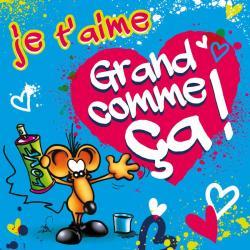 Carte Ze Souris - Je t'aime grand comme ça!... - 15x15 cm