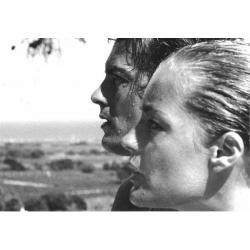 Carte La Piscine - Alain Delon et Romy Schneider - 10.5x15 cm