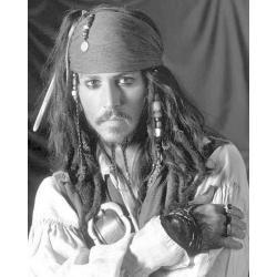 Affiche Pirates des Caraïbes - Dimension 24x30 cm