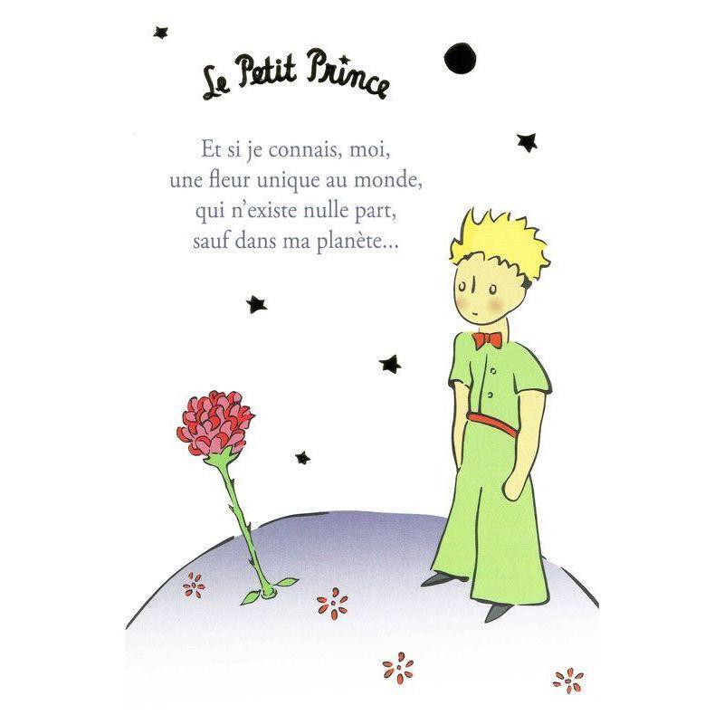 Carte Le Petit Prince De Saint Excupéry Et Si Je Connais Moi Une Fleur Unique Au Monde 10x15 Cm Planete Images Com