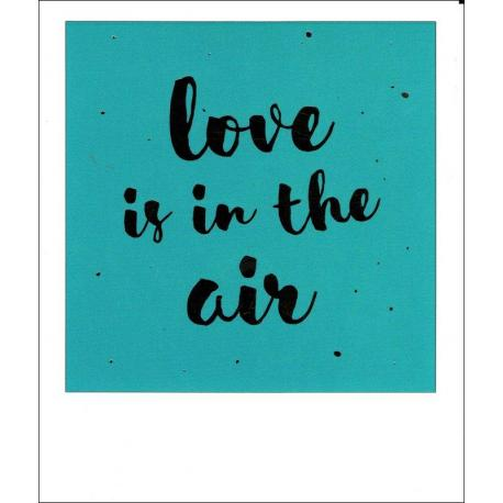 Carte citation - Love is in the air - Polaroid colorchic 10x12 cm