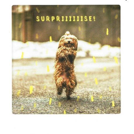 Carte Pickmotion de @Hollysisson - Surpriiiiiise ! - 10.5x13 cm