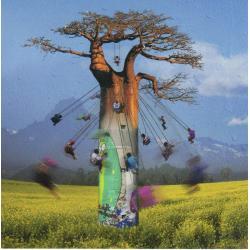 Carte Maïlo - Envolée autour du Baobab - 14x14 cm