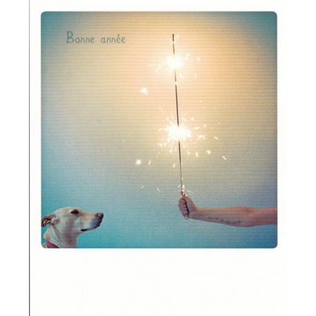 Carte Noël Pickmotion de @Aladia - Bonne année avec sheila - 10.5x13 cm