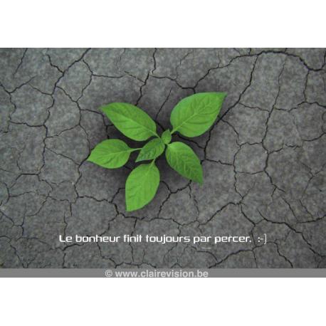 """Carte Artistes Divers : collection souris à la vie """"Le bonheur finit toujours par percer"""" - 12x17 cm"""