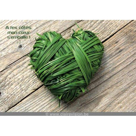 Carte Artistes Divers La collection souris à la vie - A tes côtés, mon coeur s'emballe - 12x17 cm