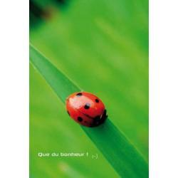Carte Artistes Divers La collection souris à la vie - Que du bonheur - 12x17 cm