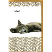 Carte Very Chic - Hello! - 12x17 cm